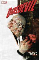 DAREDEVIL #13 MARVEL COMICS  COVER A 1ST PRINT ZDARSKY