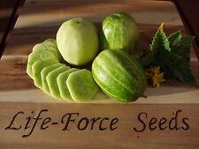 Cucumber Richmond River Green Apple (50 seeds) Organic Heirloom Seeds