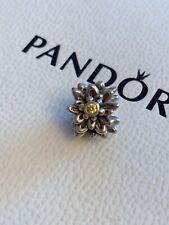 Genuine Rare Pandora Edelweiss Charm