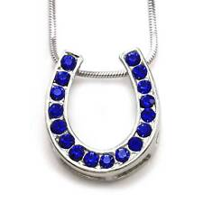 Royal Blue Horseshoe Pendant Necklace Lucky Western Cowgirl Horse Shoe n306