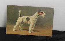 Vintage postcard #95 Fox Terrier 1940s Switzerland/Artist Signed Rivst