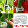 200/100x Garden Plant Support Clips for Tomato Veggie Trellis Twine Greenhouse