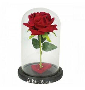 Enesco - Le Petit Prince - ROSE SOUS CLOCHE