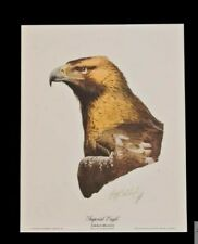 """1974 Guy Coheleach """"Imperial Eagle"""" Signed Lithograph Print in Original Folder"""