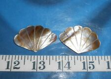 ~ Mother-of-Pearl (Black-Lip MOP) Shell Pieces ~ Polished ~ Natural Taupe/Ivory~