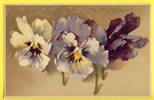"Belle Postkarte Meissner & Buch ILLUSTRATION C. KLEIN "" BLUMENFREUDEN "" Pensées"