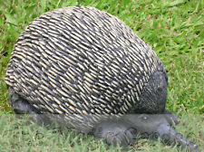 Echidna spiny ant eater cement plaster garden ornament craft latex moulds molds