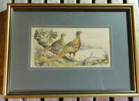 Woven silk Picture  Cashs Collector Series Birds Ring necked or common pheasant