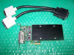 Nvidia NVS 300 512MB PCI-E x1 Dual Monitor card + splitter Cable