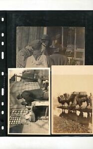 CHINA Early Unused Postcards Camels Streets Shopping x 5 (Seq151
