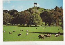 Auckland Cornwall Park & One Tree Hill New Zealand Postcard 037b