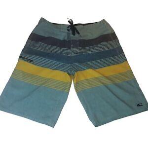O'Neill Adult Multicolor Striped Boardshorts Men's Sz 30 x 10  Surf Beach