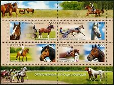 Russia-2007. Domestic horse breeds. Block