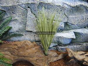 Grass Tussock 45cm Plant Reptile Enclosure Snake Lizard Frog Desert Cage ZDP-310