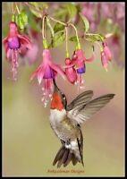 Hummingbird and Fuschia Flower - Chart Counted Cross Stitch Pattern Needlework