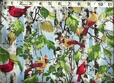 Timeless Treasures ~ Realistic Cardinals Birds 2 ~ 100% Cotton Quilt Fabric BTY