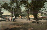 Salem Willows MA c1910 Postcard #4