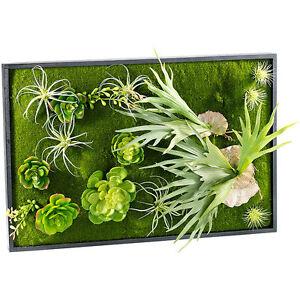 Wandbild: Vertikaler Wandgarten Knut mit Deko-Pflanzen, 60 x 40 cm