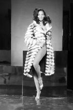 Pam Grier fur coat 11x17 Mini Poster
