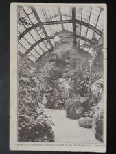 Lancashire BLACKPOOL Tropical Fernery in Winter Gardens c1906