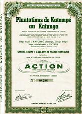 PLANTATIONS de KATOMPÉ au KATANGA