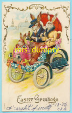 Easter Dressed Rabbits Drive Car ~ Wonderful Embossed Fantasy Humanized Postcard