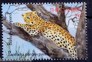 Barbary Leopard, Wild Animals, Gambia 2000 MNH