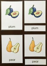 Montessori Homeschool Vocabulary Science Fruits & Berries Laminated Cards