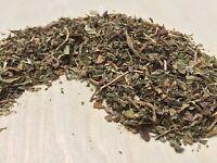 Wild Lettuce, Lactuca virosa, Leaf Heavy (USDA Organic) ~ Schmerbals Herbals
