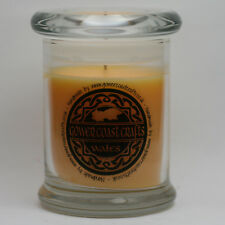 Cinnamon Stick Handpoured Highly Scented Medium Candle Jar