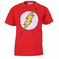 Boys DC Comics Distressed Flash Logo TShirt   3-12 YEARS