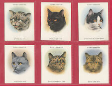 JOHN  PLAYER  &  SONS  -  VERY  RARE  SET  OF  L24  CATS  CARDS  -  1936