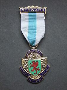 Royal Masonic Trust for Girls & Boys - Steward's Jewel 1993 RMTGB Boxed