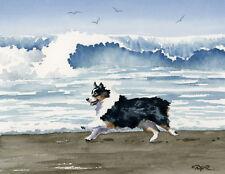Australian Shepherd At The Beach Dog Watercolor 8 x 10 Art Print by Artist Djr