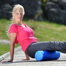 SISSEL® Pilates Roller 45cm + Swiss Ball+ Pilates Exercise Neck Pillow + Posters