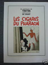 TINTIN HERGE AFFICHE LES CIGARES DU PHARAON /RARE