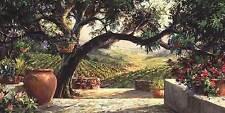 Art Fronckowiak Napa Patio  California Vineyards Patios Wine Print Poster 12x24