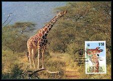 KENIA MK FAUNA GIRAFFE KENYA ANIMALS MAXIMUMKARTE CARTE MAXIMUM CARD MC CM bf24