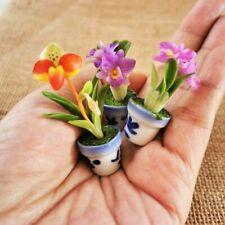 3 Mini Clay Orchid Flowers Cattleya Lady Slipper Miniature Dollhouse Fairy Decor