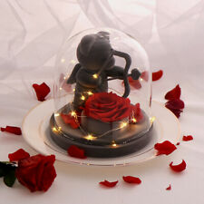 WR Cupid Bear Eternal Rose Red Flowers LED Glass Dome Valentines Day Gifts