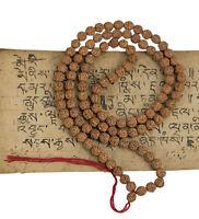 Collana Mala Rosario Shiva Semi Rudraksha 5 Faces Ø7.5 MM Nepal 8448