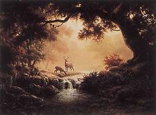 """""""Woodland Reflection""""  by Dalhart Windberg"""
