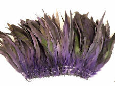"50+ PURPLE CHINCHILLA GRIZZLY ROOSTER TAILS CRAFT MILLINERY FEATHERS 6""-8""L"
