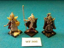Warhammer Fantasy - Dark Elves - Black Guard Command Group Incomp. - Metal WF366