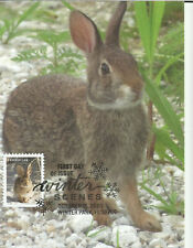 Cotton-Tail Rabbit Fdc Winter Scenes Usa rodent mammal Maximum Card