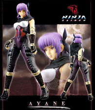 Ayane Ninja Gaiden Dead or Alive Figure Model Resin Kit Unpainted Unassembled
