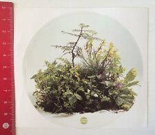 Aufkleber/Sticker: Kytta - Blumen Pflanzen (20031647)