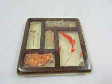 Vintage Primitive Folk Art Dried Flower and Seed Art Covered in Resin