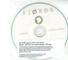(DW570) Fjords, Domino  - 2013 DJ CD