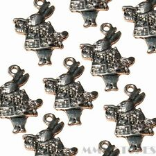 10 tibétain argent antique alice lapin charm pendentif perles taille 26mmx17mm TS62